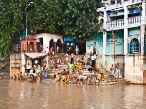 Ablutions dans les eaux du Gange