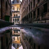 Puddle reflections : Paris, Institut de France