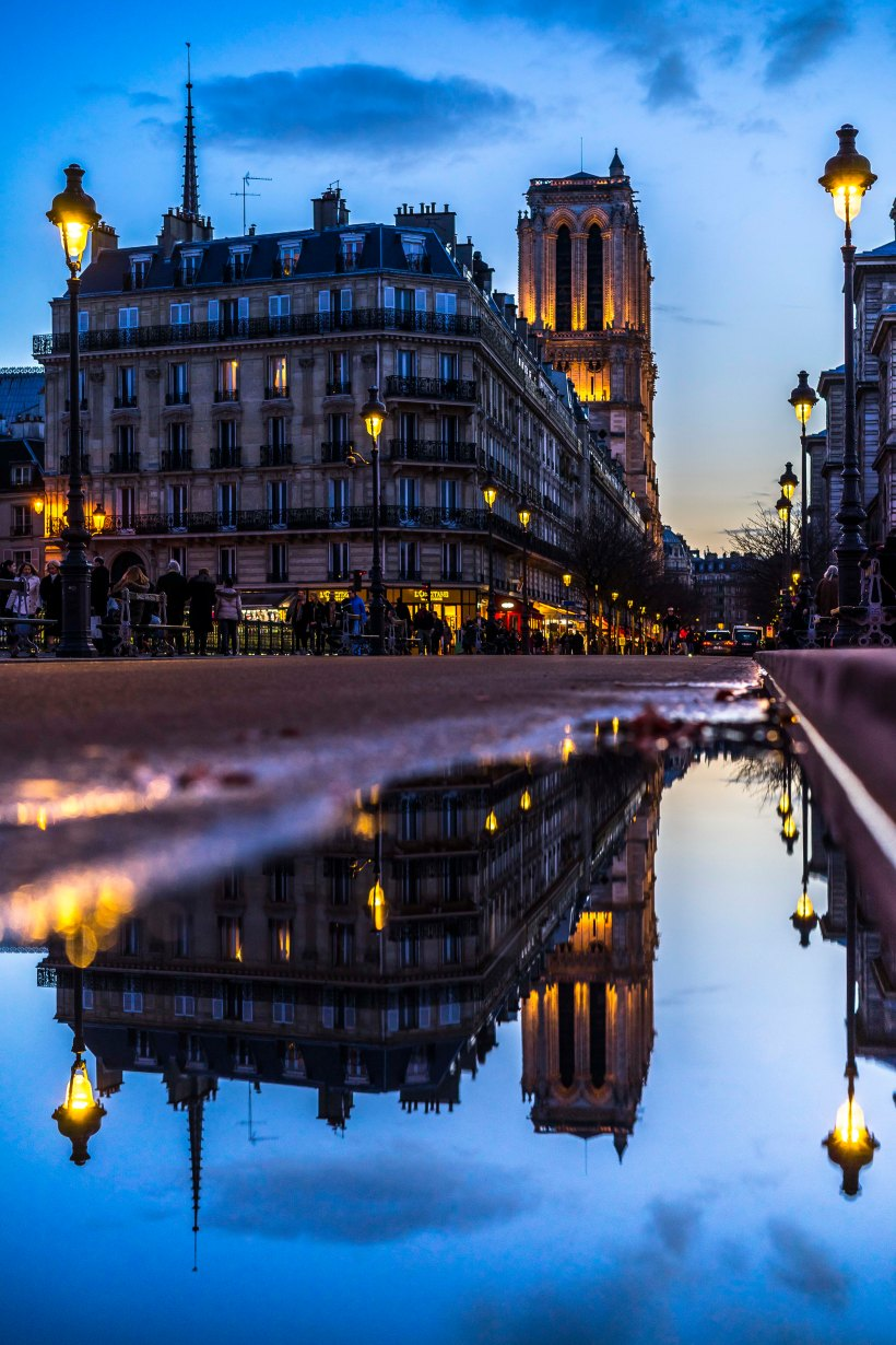 Paris, France, Notre-Dame reflection in a puddle