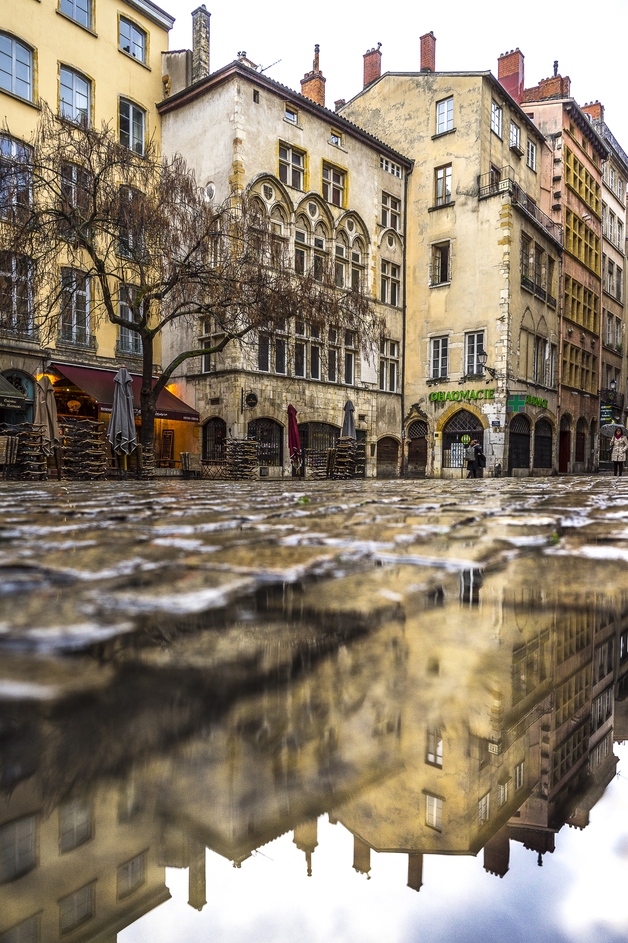 Lyon, France - Maison Thomassin reflecting in a puddle