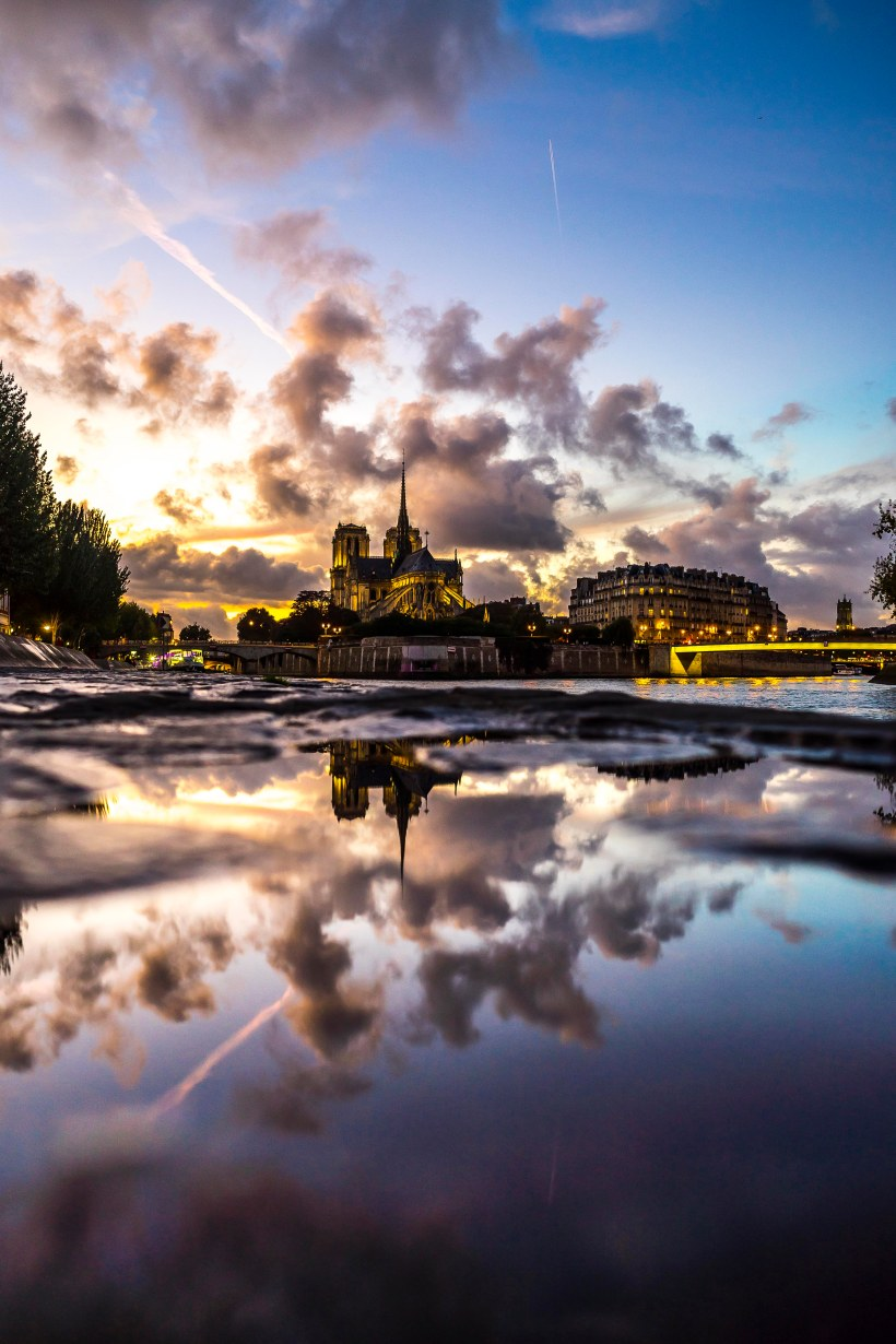 Paris, France - Notre-Dame de Paris in a puddle at sunset