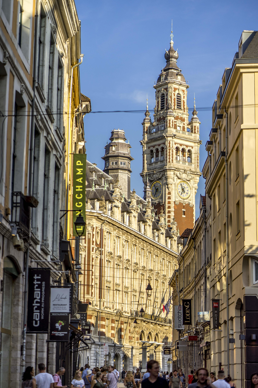 Lille, France - Shopping Street